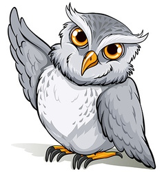 A wise owl idiom vector image