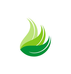 green leaf abstract ecology logo vector image