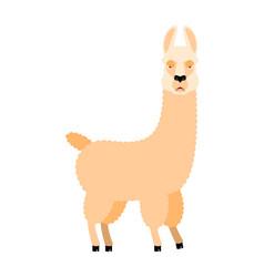 lama alpaca angry animal evil emoji vector image