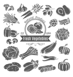 Monochrome vegetables icons vector