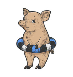 Piggy with rubber ring sketch vector