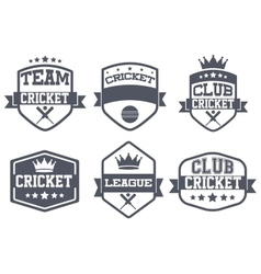 Set of Vintage Cricket Club Badge and Label vector image