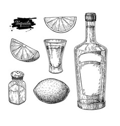 tequila bottle salt shaker and shot glass vector image