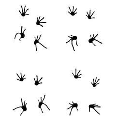 footprints of lizard vector image vector image