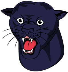 nice panther head vector image vector image