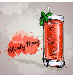 Hand drawn cocktail bloody mary vector image