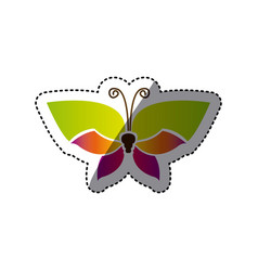 Butterfly with tricolor wings icon vector