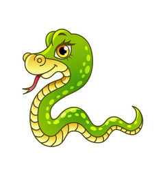 cartoon snake isolated vector image