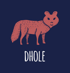 dhole or dog or wolf or fox hand drawn on white vector image