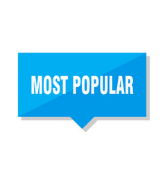most popular price tag vector image