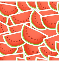 Red water melon seamless background vector image
