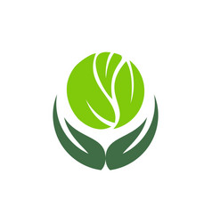 save nature herbal green leaves forest logo icon vector image
