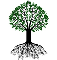 tree silhouette background vector image vector image