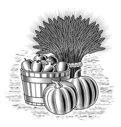 Retro harvest still life black and white vector image vector image