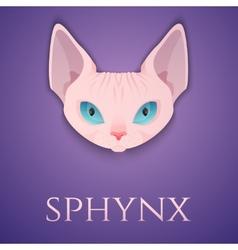 Sphynx cat face vector
