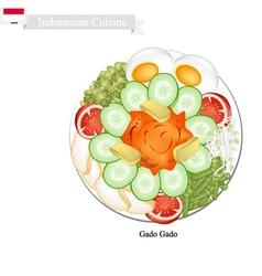 Gado Gado or Indonesian Vegetable Salad vector image
