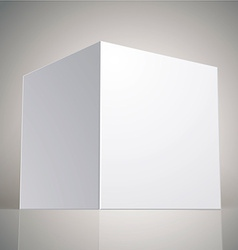 blank box template for your package design put vector image
