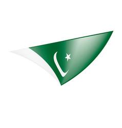 Pakistan flag vector