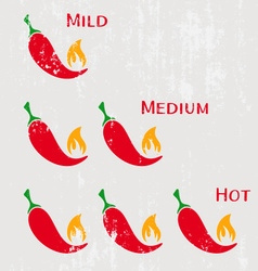 Red hot chilli peppers vector