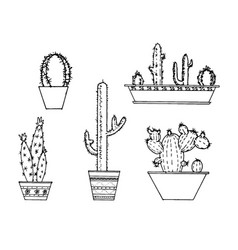 set of hand drawn cactus sketch vector image