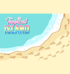 top view tropical island seashore with sea vector image