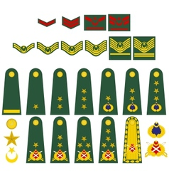 Turkish army insignia vector image