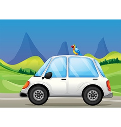 A white car with a bird near the hills vector image vector image