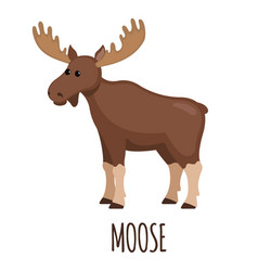 Cute moose in flat style vector