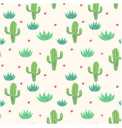 botanicals pattern cactus aloe vera background vec vector image