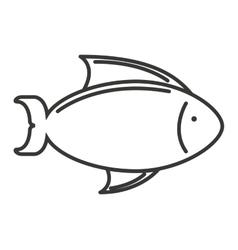 Fish sea colors icon vector