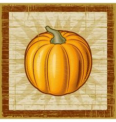 Retro pumpkin vector image