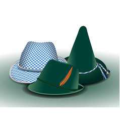 set of traditionals hats vector image