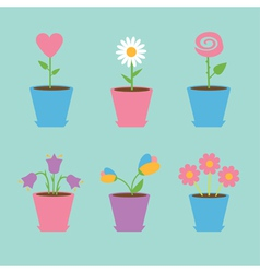 Set six flowers in pots blue background card vector
