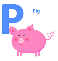cute pink pig on alphabet icon character p drawn vector image