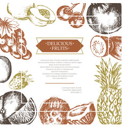 All side fruit frame - hand drawn design vector