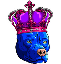 Colored pitbull dog with crown vector