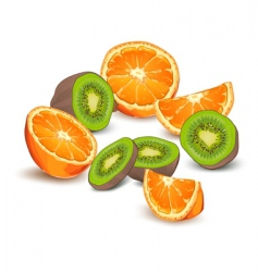 orange and kiwi fruit vector image