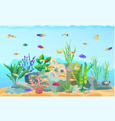 Sea plants and limless animals vector