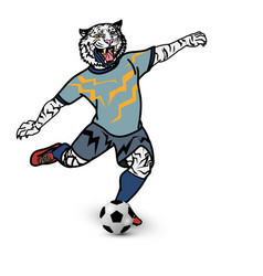 tiger football player is kicking football on vector image