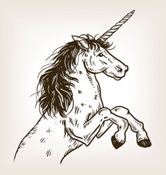 unicorn engraving vector image