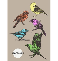 Set of hand-drawn birds vector image