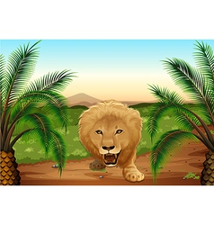 A lion at the jungle vector