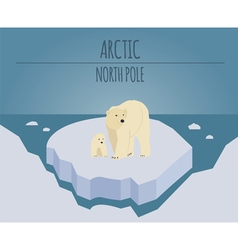 Arctic North Pole graphic template vector