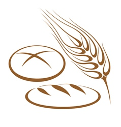 Bakery bread barley vector