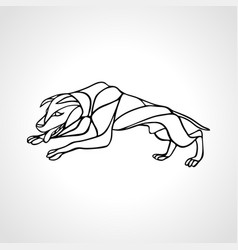 fighting dog pit bull terrier dog or canine wavy vector image