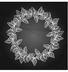 Graphic oregano wreath vector