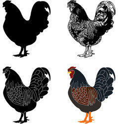 hen silhouettesketch and vector image