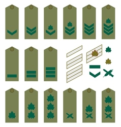 Israeli Army insignia vector image