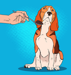 Pop art beagle refuses to eat sad dog vector