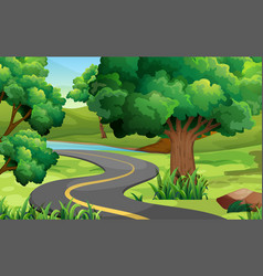 Road in the middle of the park vector